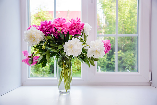 Bouquet of white and pink peonies on the windowsill