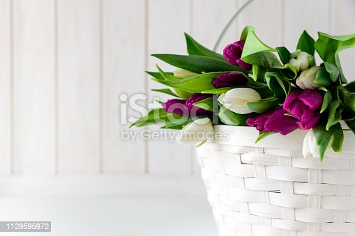 921112244 istock photo Bouquet of white and purple tulips in basket in front of white wooden wall. Top view. Flat lay. Copy space. Valentines day, mothers day, birthday, wedding celebration concept. 1129595972