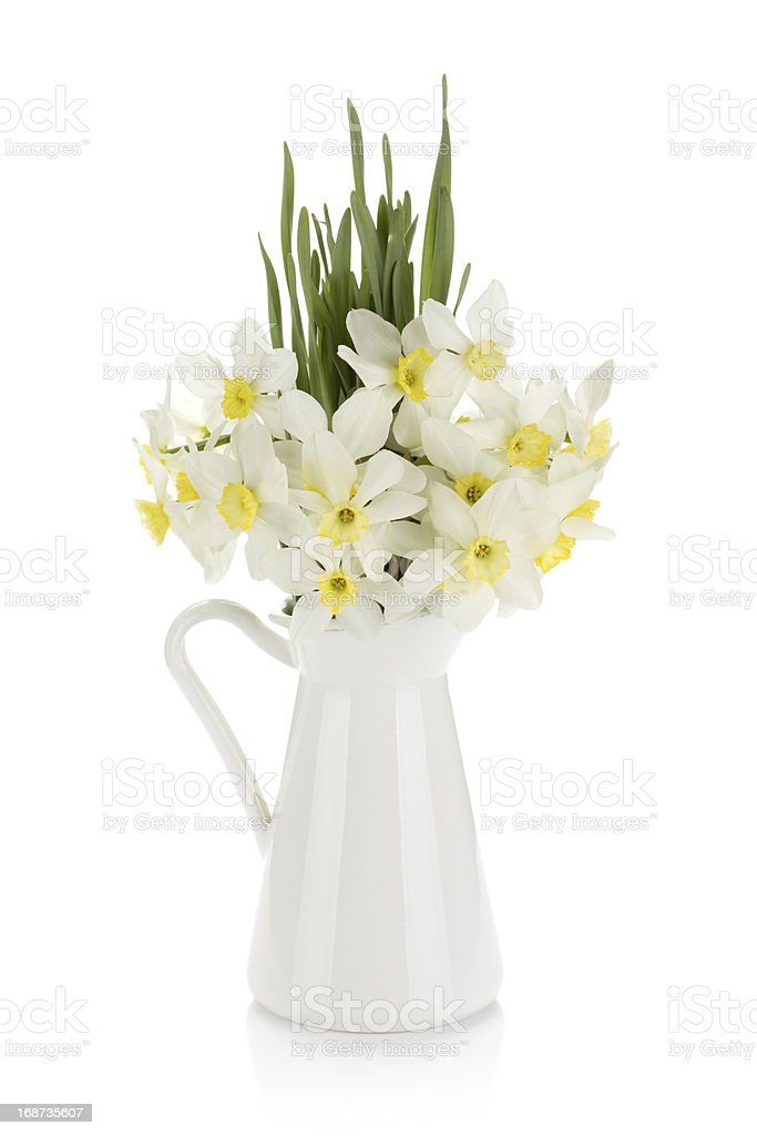 Bouquet of white daffodils in jug royalty-free stock photo