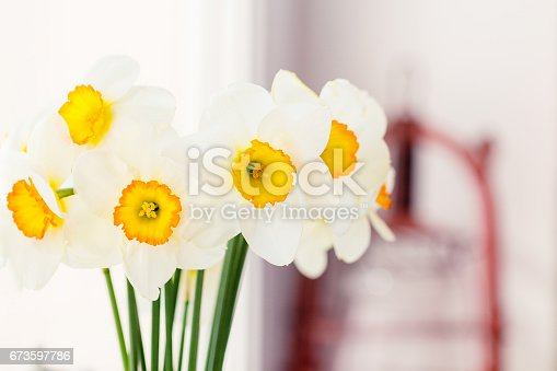 istock Bouquet of white daffodils 673597786