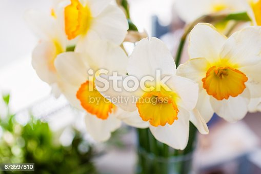 istock Bouquet of white daffodils 673597810