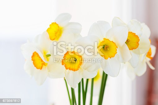 istock Bouquet of white daffodils 673597812