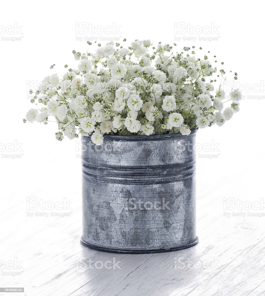 Bouquet of white gypsophila on wooden background stock photo