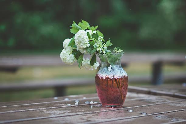 Blumenstrauß von weißen Hortensien in Glasvase mit Roten Meer – Foto
