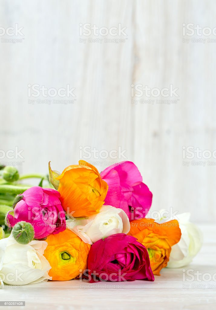 bouquet of white, pink and orange buttercups on wooden table stock photo