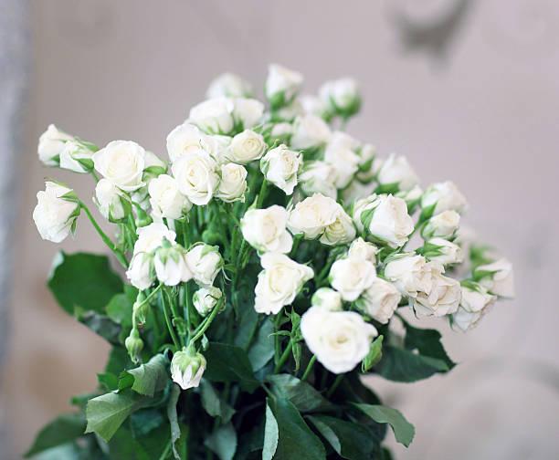 Ramo de rosas blancas - foto de stock