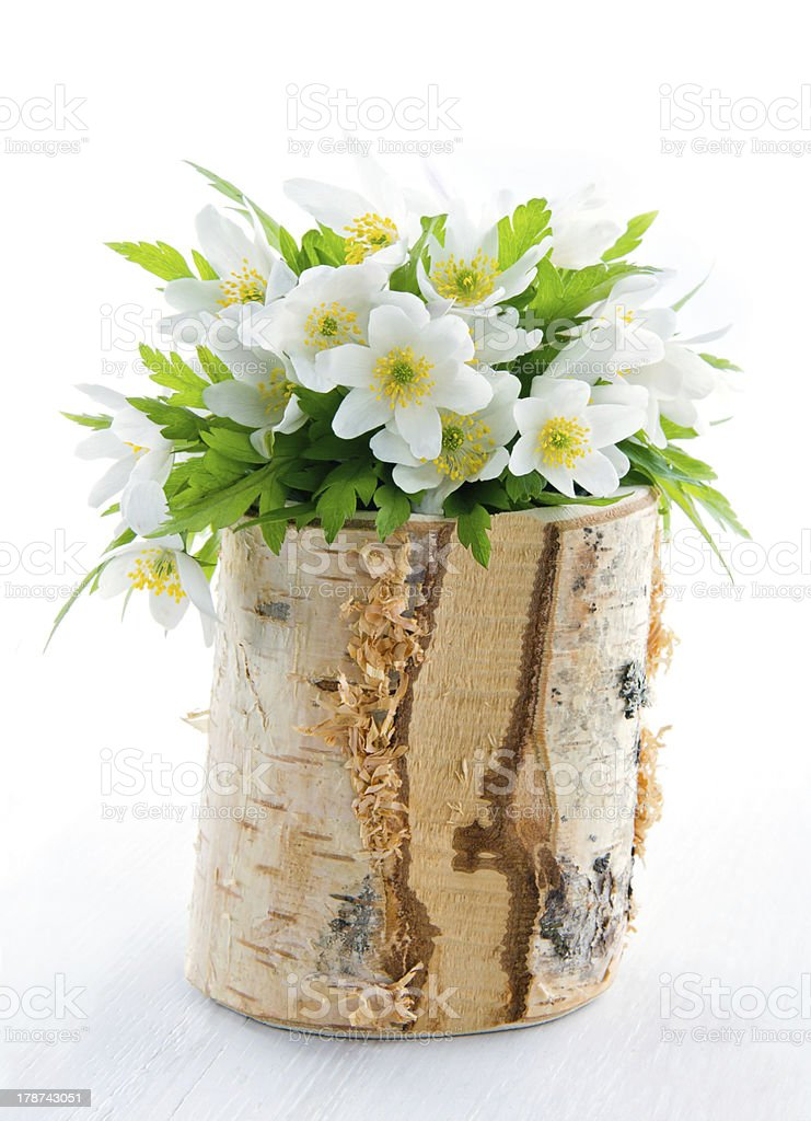 Bouquet of white spring flowers stock photo