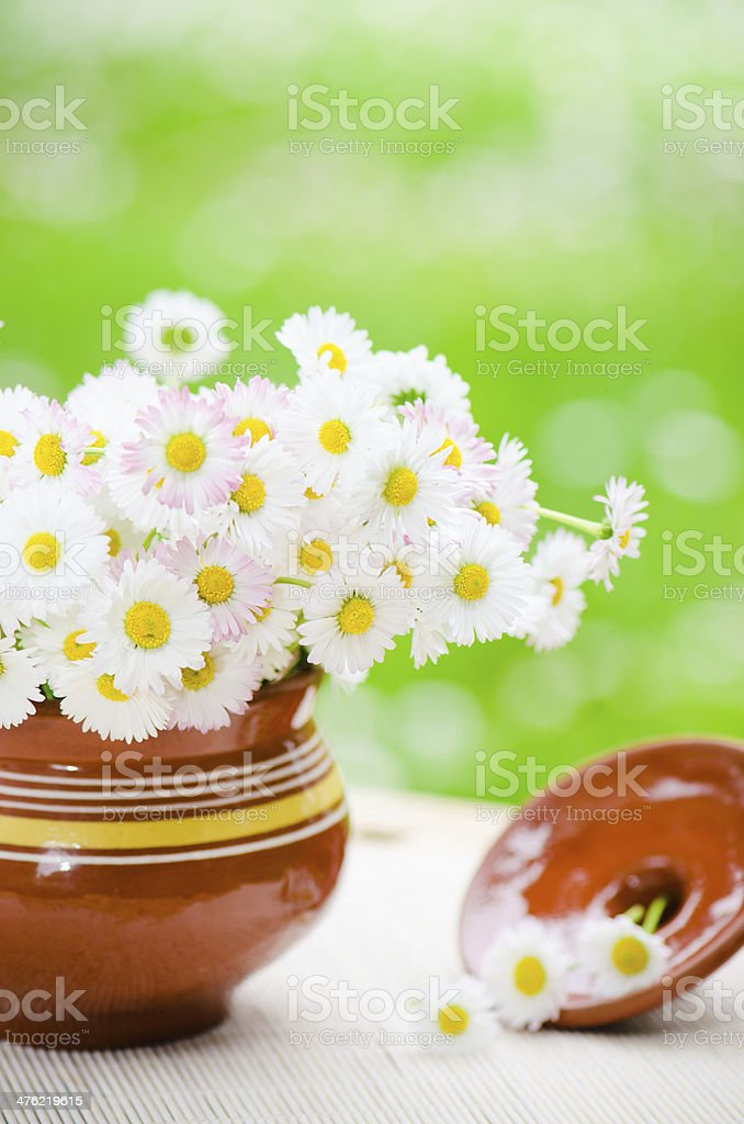 Bouquet of wild flowers in a pot at the table royalty-free stock photo