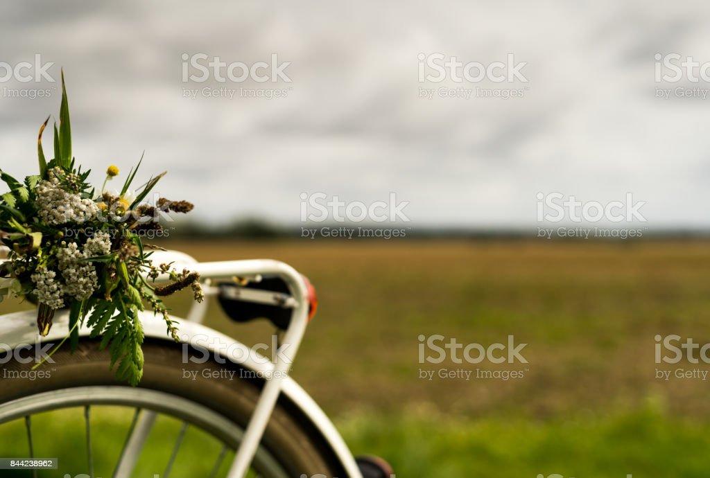 Bouquet of wild flowers on a bike rack стоковое фото