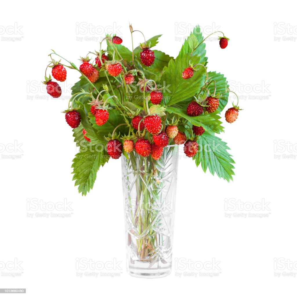 Incroyable Photo libre de droit de Bouquet De Fraises Des Bois Isolé Sur Fond DA-43