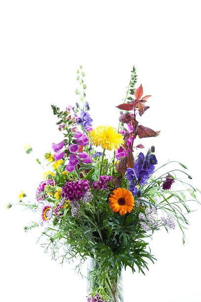Bouquet Fleurs Des Champs - Photos et Images Libres de Droits - iStock