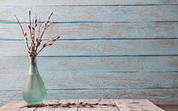 Royalty Free Pussy Willow Vase Branch Willow Tree Pictures Images