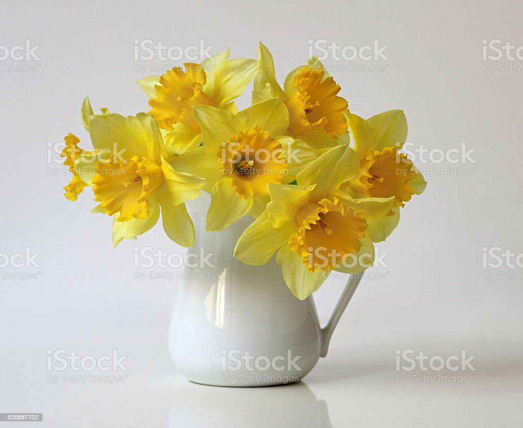 Bouquet of yellow daffodils flowers in a vase. Spring narcissus flowers. stock photo