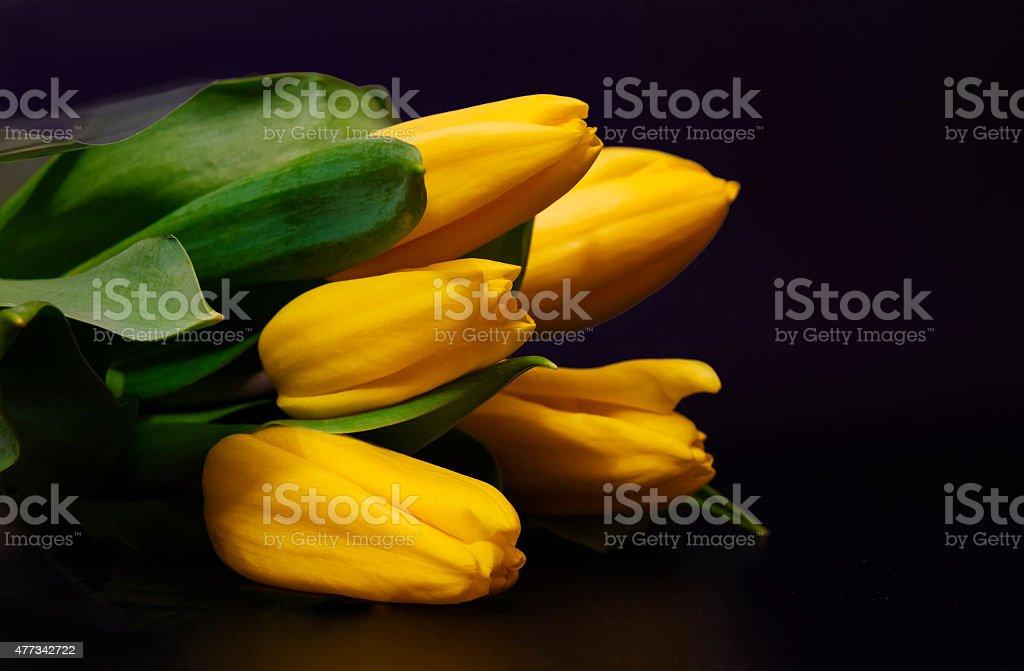 Букет из Желтых тюльпанов на черном фоне стоковое фото