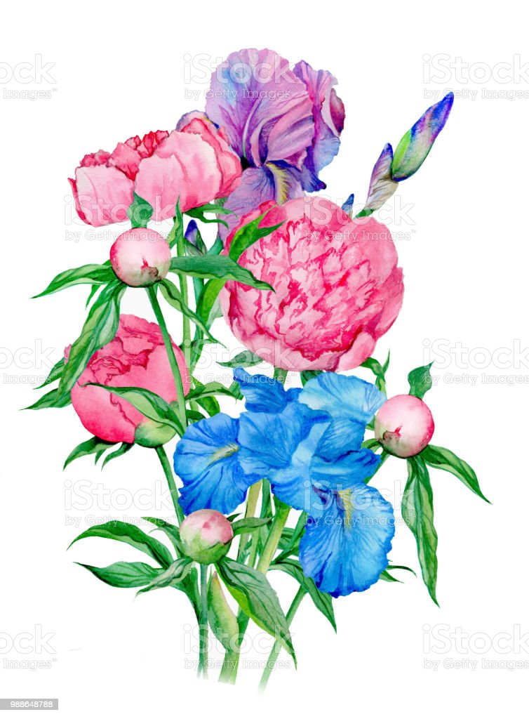 bouquet peonies and iris stock photo