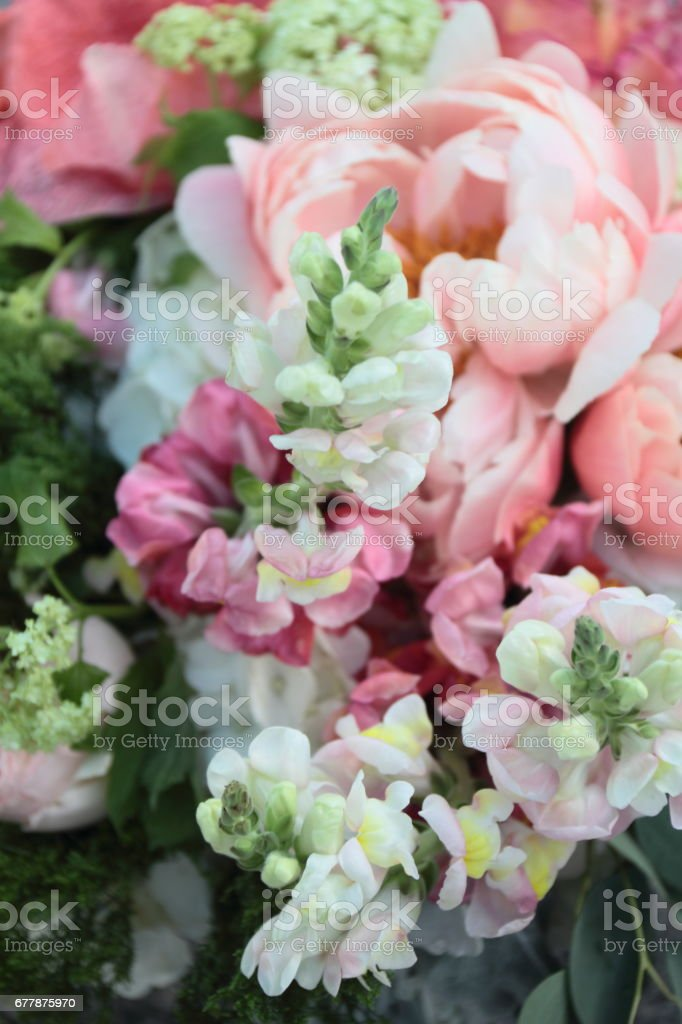 A bouquet. royalty-free stock photo