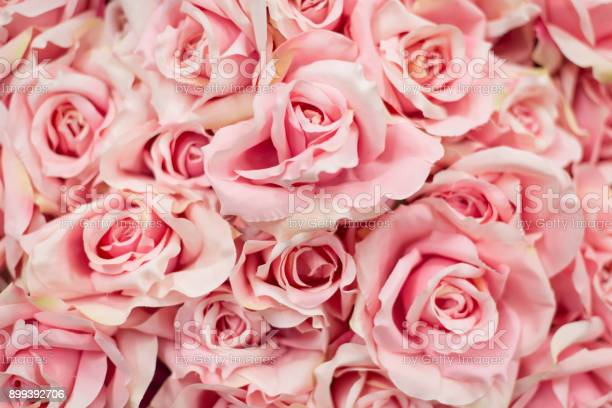 Bouquet pink artificial roses for background picture id899392706?b=1&k=6&m=899392706&s=612x612&h=7fzl3l9cse1o6lj9bwrfwrbbph9gjevwklqhn6rcxh4=