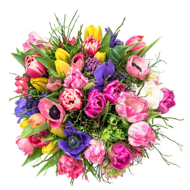tulipe de printemps bouquet fleurs fond blanc isolé - bouquet de fleurs photos et images de collection