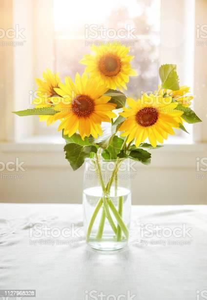 Bouquet sunflowers on sunny window summery still picture id1127968328?b=1&k=6&m=1127968328&s=612x612&h=ta4prxkqua0l2ow4iyrn2fhdfygoxj6grrveoit34iy=