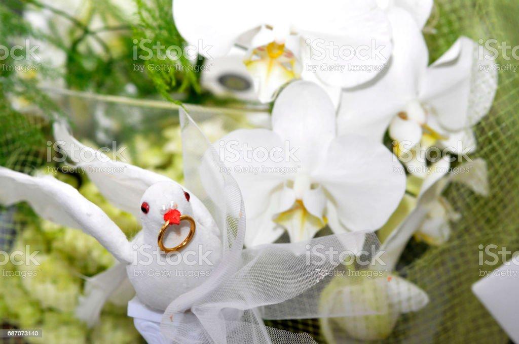 Bouquet with a dove Lizenzfreies stock-foto