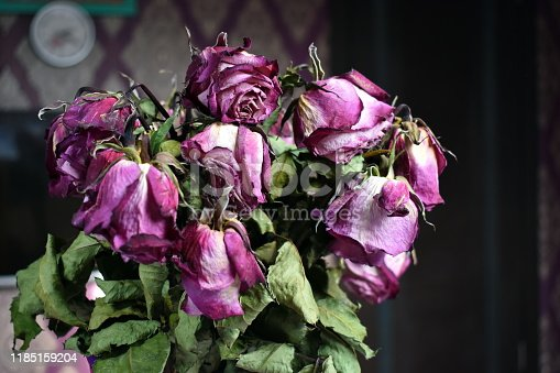 Purple decorative dried flowers. Floral old decor. The fragility of fresh flowers. Lilac buds of old dead roses.