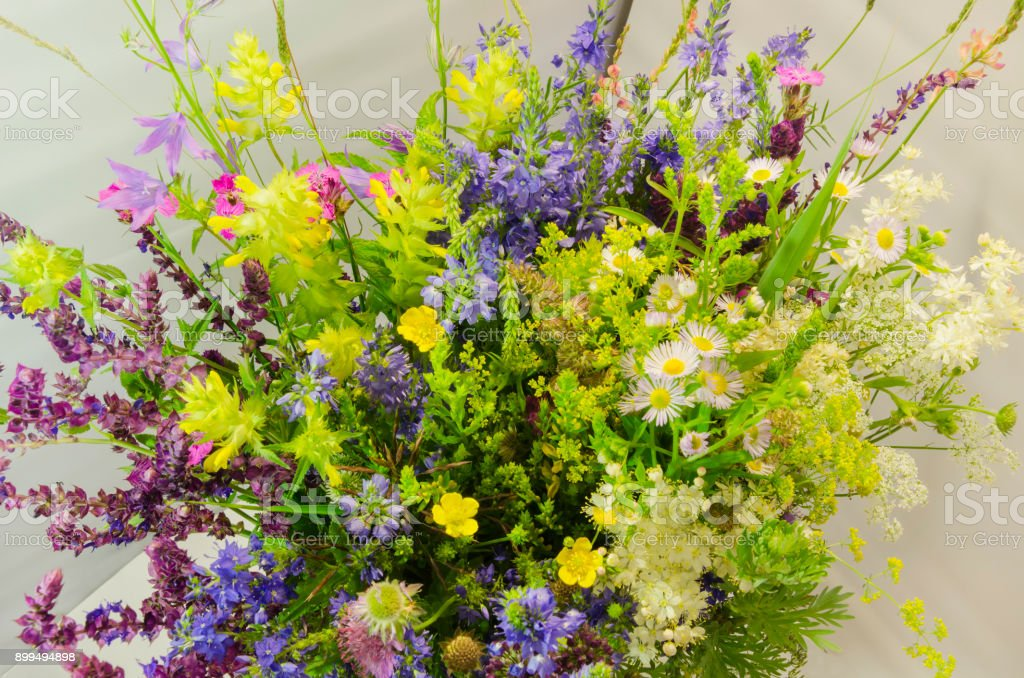 bouquet with meadow grasses stock photo