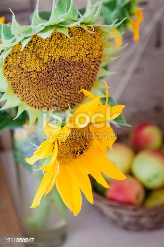istock A bouquet with rustic flowers a sunflower stands on a table near a basket with red apples 1211858847