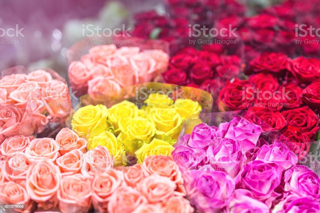 Bouquets Of Multiclored Roses Fresh Flower Background Florist ...