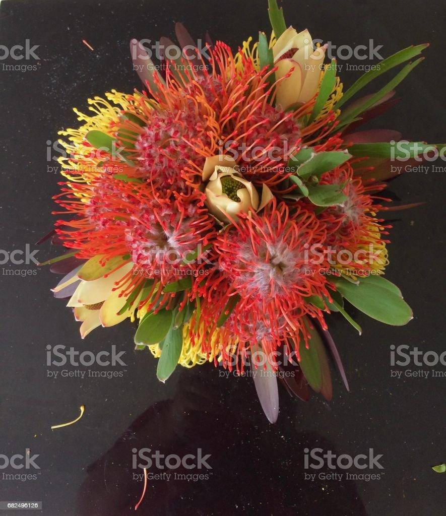 Bouquets Стоковые фото Стоковая фотография