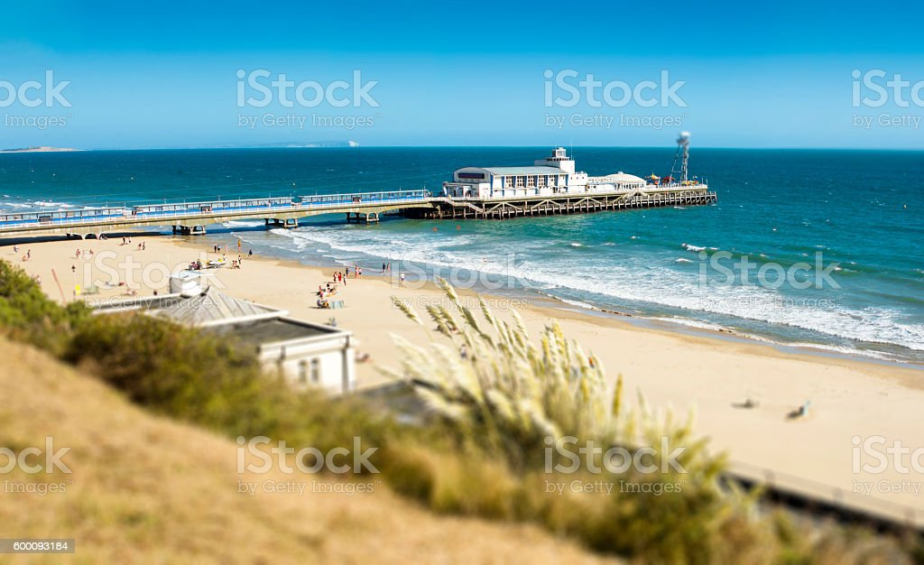 Bournemouth Beach & Pier Pampass Grass stock photo