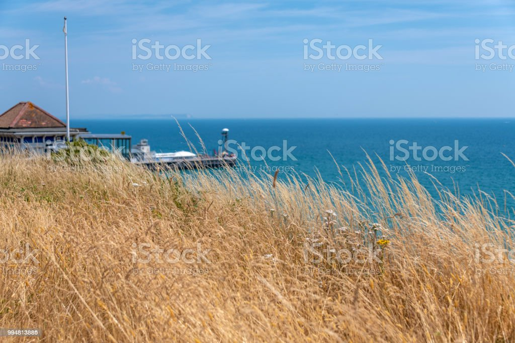 Bournemouth seafront and beach from cliff top with parched grass stock photo