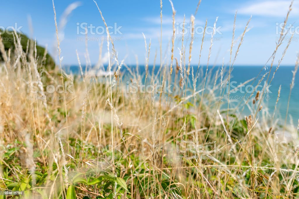 Bournemouth seafront from grassy cliff edge stock photo