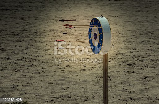istock Bow and arrow rprojectile weapon system archery 1045821428