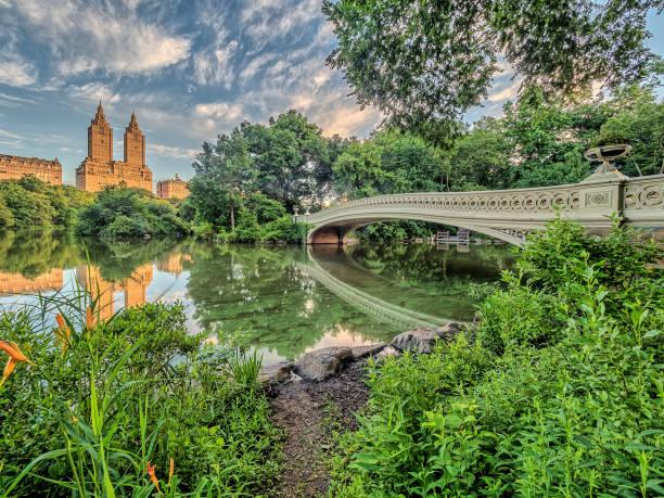 bow bridge central park - central park manhattan zdjęcia i obrazy z banku zdjęć