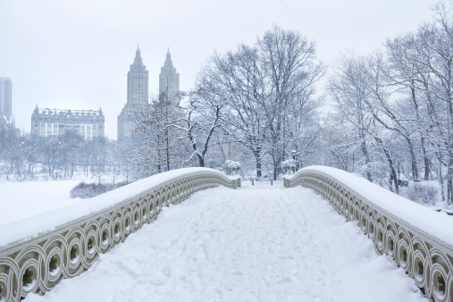 Bow bridge in Central Park, New York City. It is a cast iron bridge built between 1859-1862. It has been featured in many movies as a romantic spot. In the background are visible two famous New York apartment buildings, the Dakota and the San Remo. Falling snow visible in high resolution file.