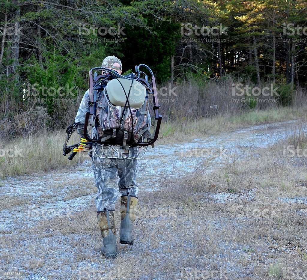 Bow hunter entering the woods stock photo