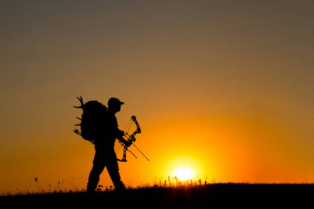 Bowhunter in Sunset Bowhunter in Sunset hunter stock pictures, royalty-free photos & images