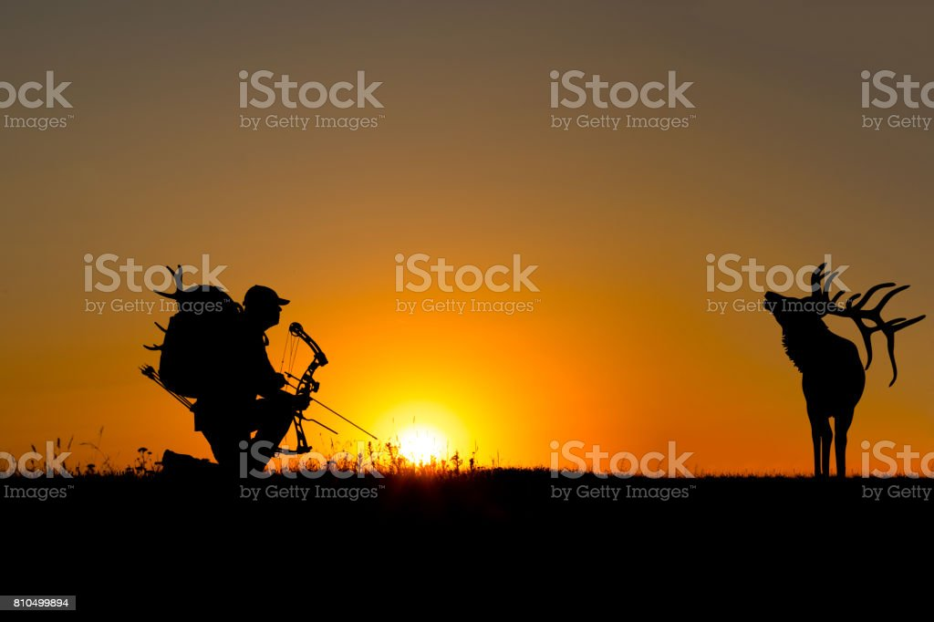 Bowhunter in Sunset stock photo