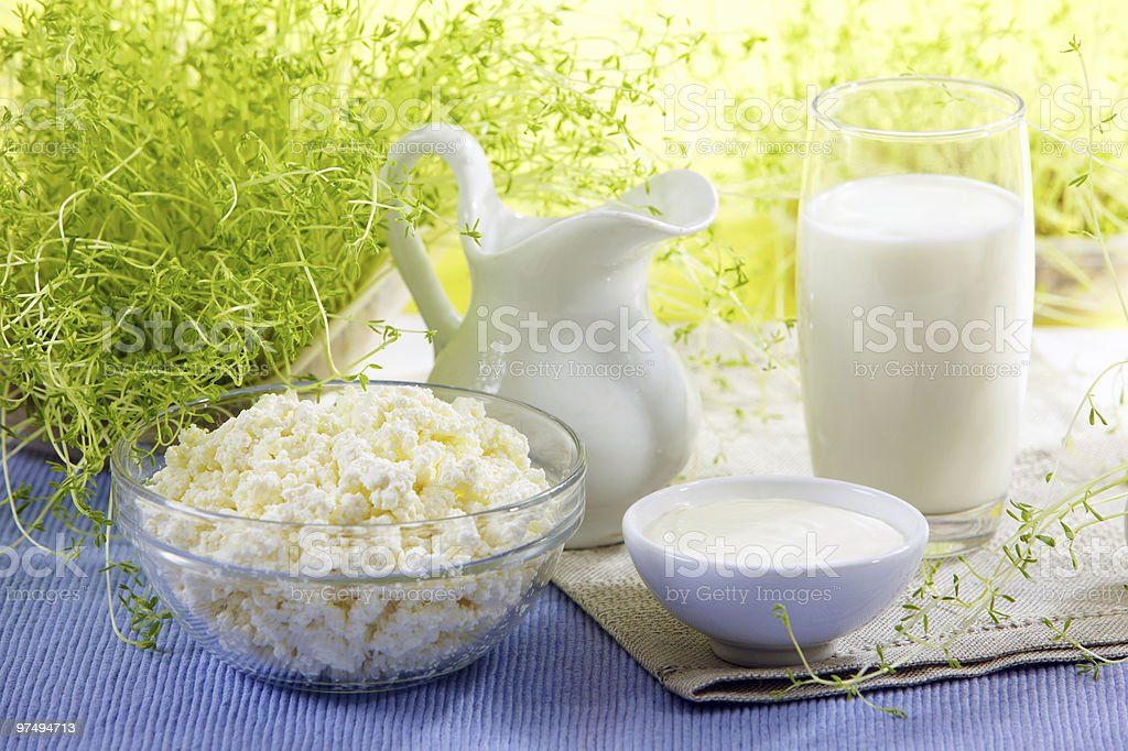 Bowl of cheese, yogurt and other milk products royalty-free stock photo