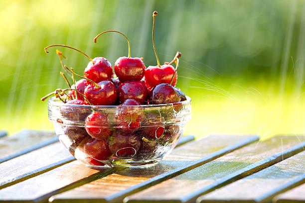 Bowl of Cherries in Regen – Foto
