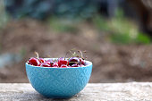 Bowl of fresh cherries, served in a garden. Selective focus.
