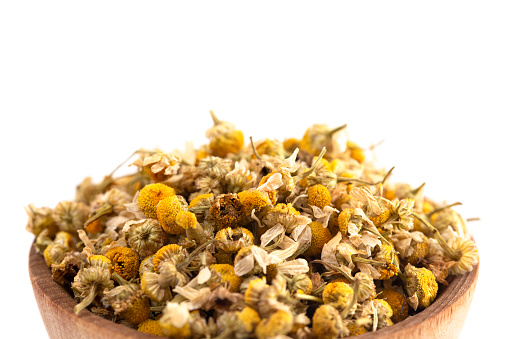 A Bowl Of Dried Chamomile Flowers Isolated On A White ... Chamomile Houseplant on