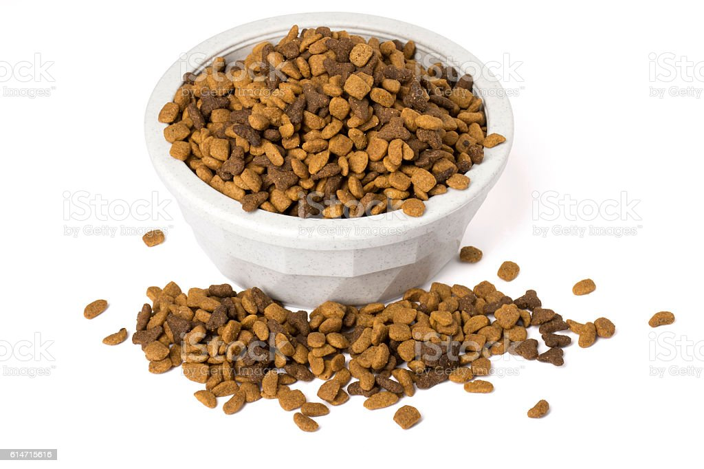 Bowl of dry cat food overflowing stock photo