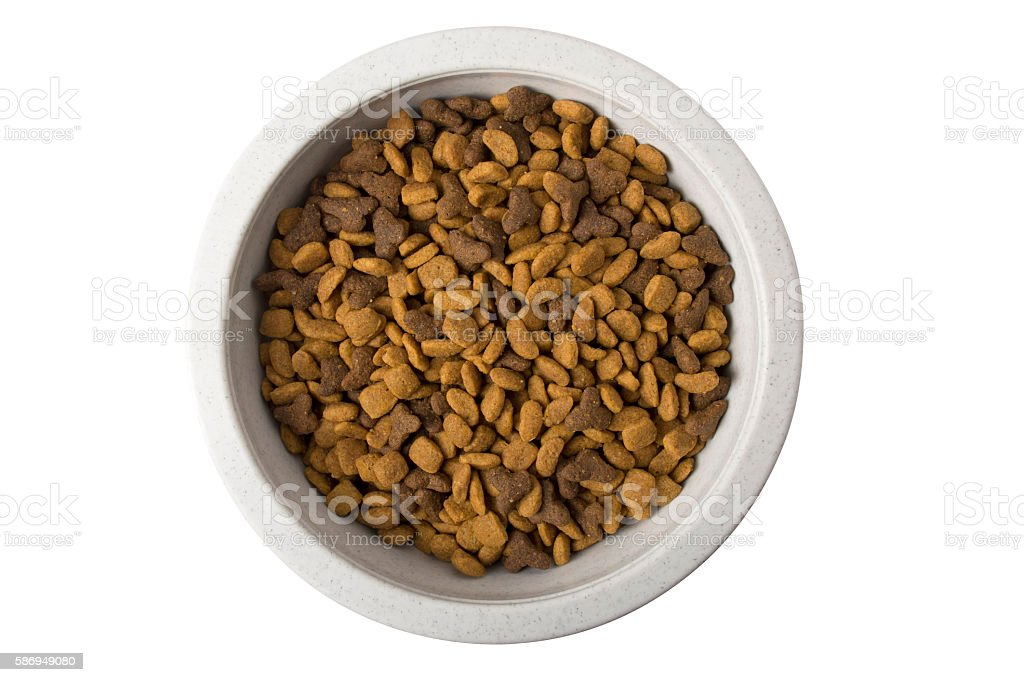 Bowl of dry cat food stock photo