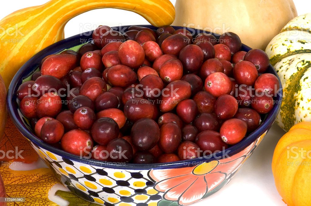 Bowl of Fresh Cranberries royalty-free stock photo