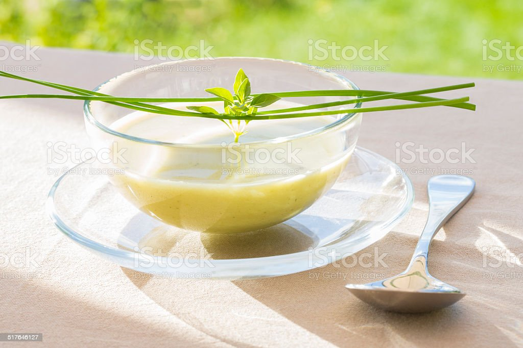 Bowl of green Gaspacho with basil and chives royalty-free stock photo