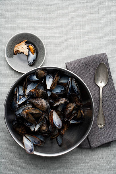 Bowl of mussels shells stock photo