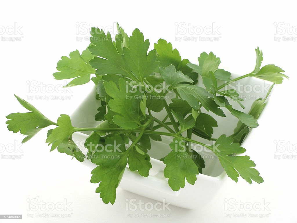Bowl of parsley royalty-free stock photo