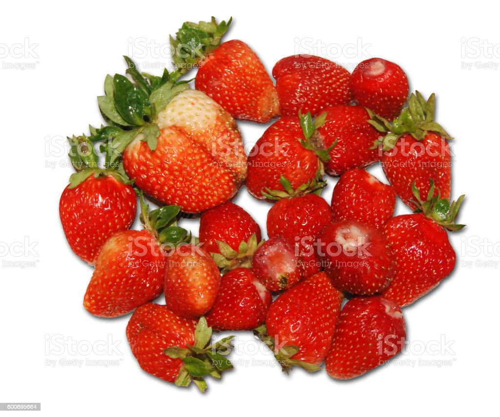 Bowl of red strawberries stock photo