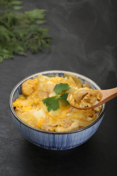 Schüssel Reis mit Huhn und Eiern – Foto
